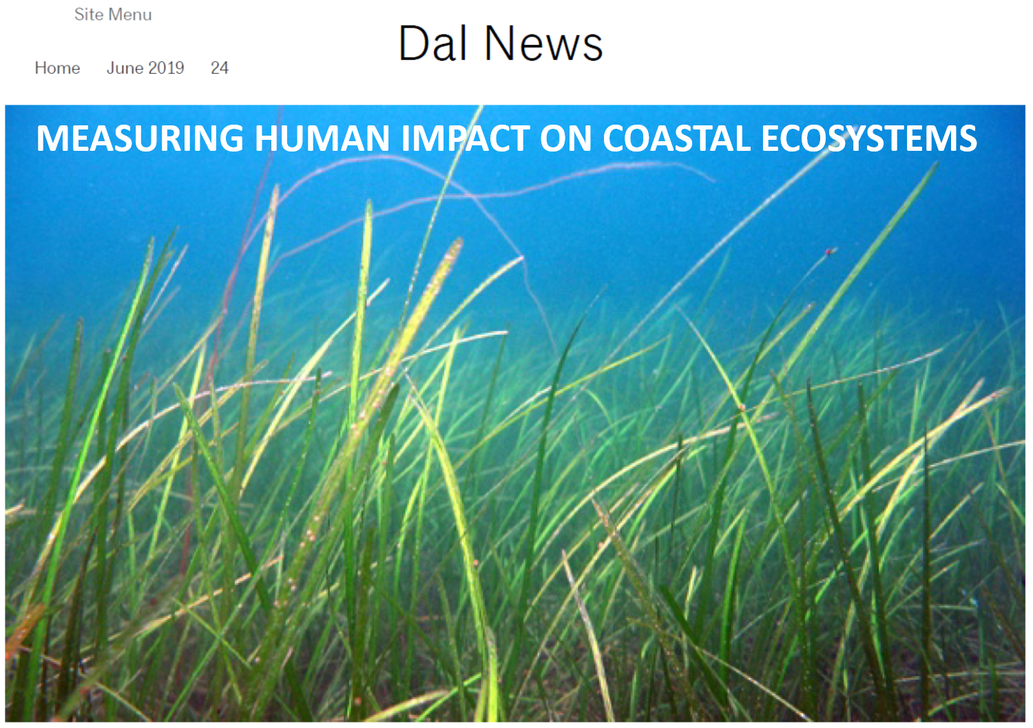 2019_human impacts_Dal news